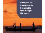 Fisheries Finance